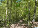 11685 Glass Hollow Road - Photo 22