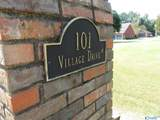 101 Village Drive - Photo 3