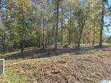 2231 Lookout Mountain Drive - Photo 4