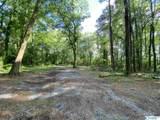 4200 Alabama Highway 157 - Photo 11