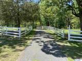 260 County Road 608 - Photo 43