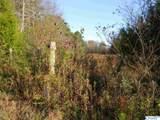 Tract # 6 B County Road 142 - Photo 4