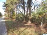 Tract # 6 D County Road 142 - Photo 1