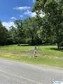 0 County Road 220 - Photo 2