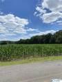 0 County Road 220 - Photo 4