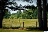 1253 Nixon Chapel Road - Photo 50