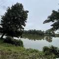 1089 Mockingbird Drive - Photo 1