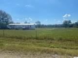 1214 County Road 125 - Photo 3