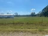 1214 County Road 125 - Photo 4