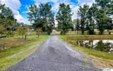 3801 Alabama Highway 157 - Photo 6
