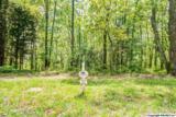 1 South Bluff Trail - Photo 16