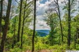 1 South Bluff Trail - Photo 26