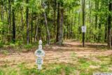 1 South Bluff Trail - Photo 31