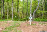 1 South Bluff Trail - Photo 36