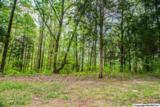 7 South Bluff Trail - Photo 32