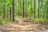 7 South Bluff Trail - Photo 38