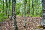 7 South Bluff Trail - Photo 39