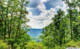 7 South Bluff Trail - Photo 49
