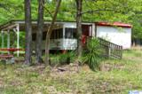 475 County Road 509 - Photo 2