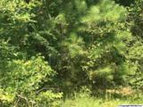 8346 Cedar Mountain Road - Photo 4