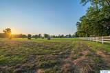 9270 Pulaski Pike - Photo 4