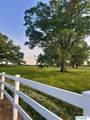 9270 Pulaski Pike - Photo 7
