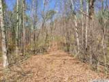 Northwoods Trail - Photo 4