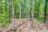 1 South Bluff Trail - Photo 20