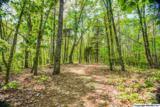 1 South Bluff Trail - Photo 40
