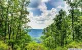 1 South Bluff Trail - Photo 48