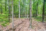 7 South Bluff Trail - Photo 21