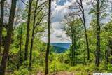 7 South Bluff Trail - Photo 27