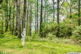 7 South Bluff Trail - Photo 28