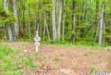7 South Bluff Trail - Photo 34