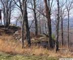 23353 County Road 89 - Photo 17