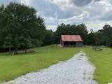 925 County Road 321 - Photo 16