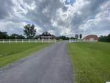 925 County Road 321 - Photo 19