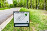 1 South Bluff Trail - Photo 7