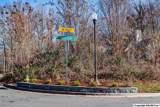 7 South Bluff Trail - Photo 5