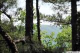 7 South Bluff Trail - Photo 8