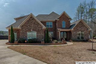 102 Cutwater Court, Harvest, AL 35749 (MLS #1065645) :: Amanda Howard Real Estate