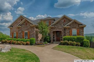 16 Hadley Hill Lane, Gurley, AL 35748 (MLS #1066913) :: Amanda Howard Real Estate