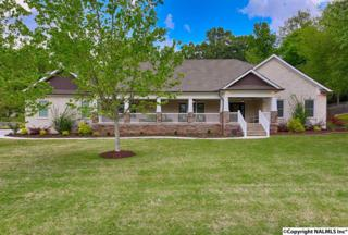 1401 Appalachee Drive, Huntsville, AL 35801 (MLS #1067398) :: Amanda Howard Real Estate