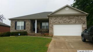 105 Burwellspring Lane, Harvest, AL 35749 (MLS #1067400) :: Amanda Howard Real Estate