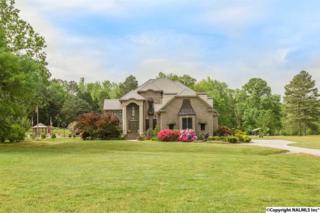 9078 Snake Road, Athens, AL 35611 (MLS #1067420) :: Amanda Howard Real Estate