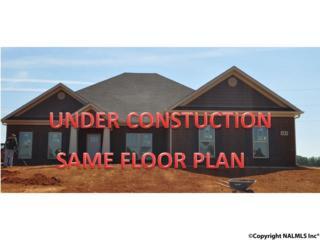 244 Cozy Creek Road, Meridianville, AL 35759 (MLS #1067459) :: Amanda Howard Real Estate