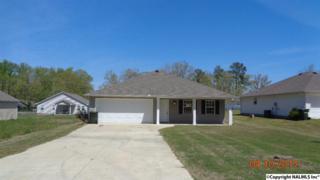 206 Ann Street, Glencoe, AL 35905 (MLS #1067460) :: Amanda Howard Real Estate