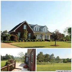 1475 Northridge Trace, Albertville, AL 35951 (MLS #1067504) :: Amanda Howard Real Estate