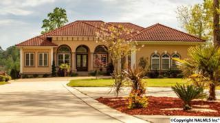 850 County Road 295, Cullman, AL 35057 (MLS #1067523) :: Amanda Howard Real Estate