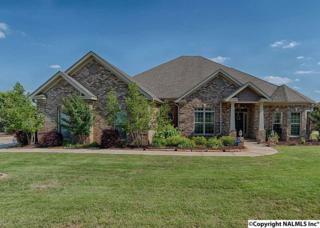 4520 Highland Park Drive, Owens Cross Roads, AL 35763 (MLS #1068889) :: Amanda Howard Real Estate